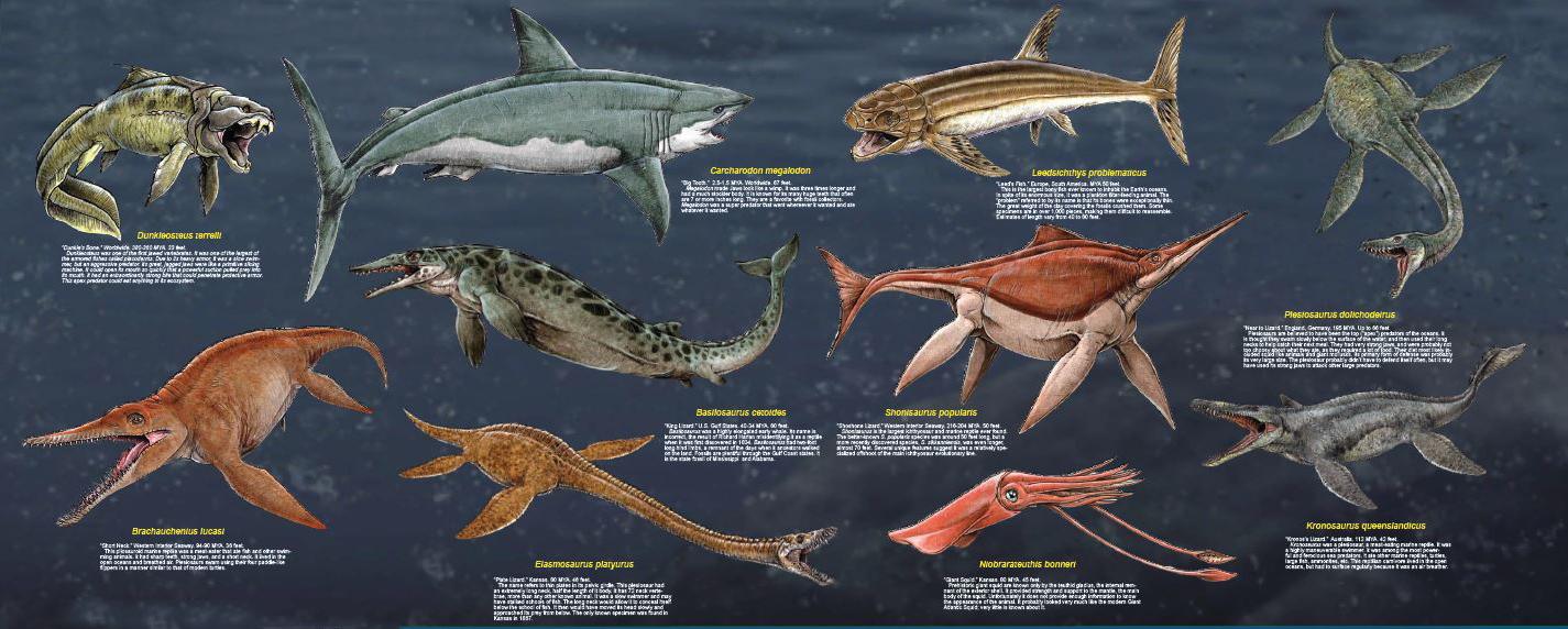 Large Prehistoric Sea Monsters